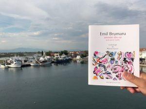 Amintiri din rai - Emil Brumaru