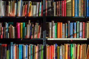 carti libris.ro